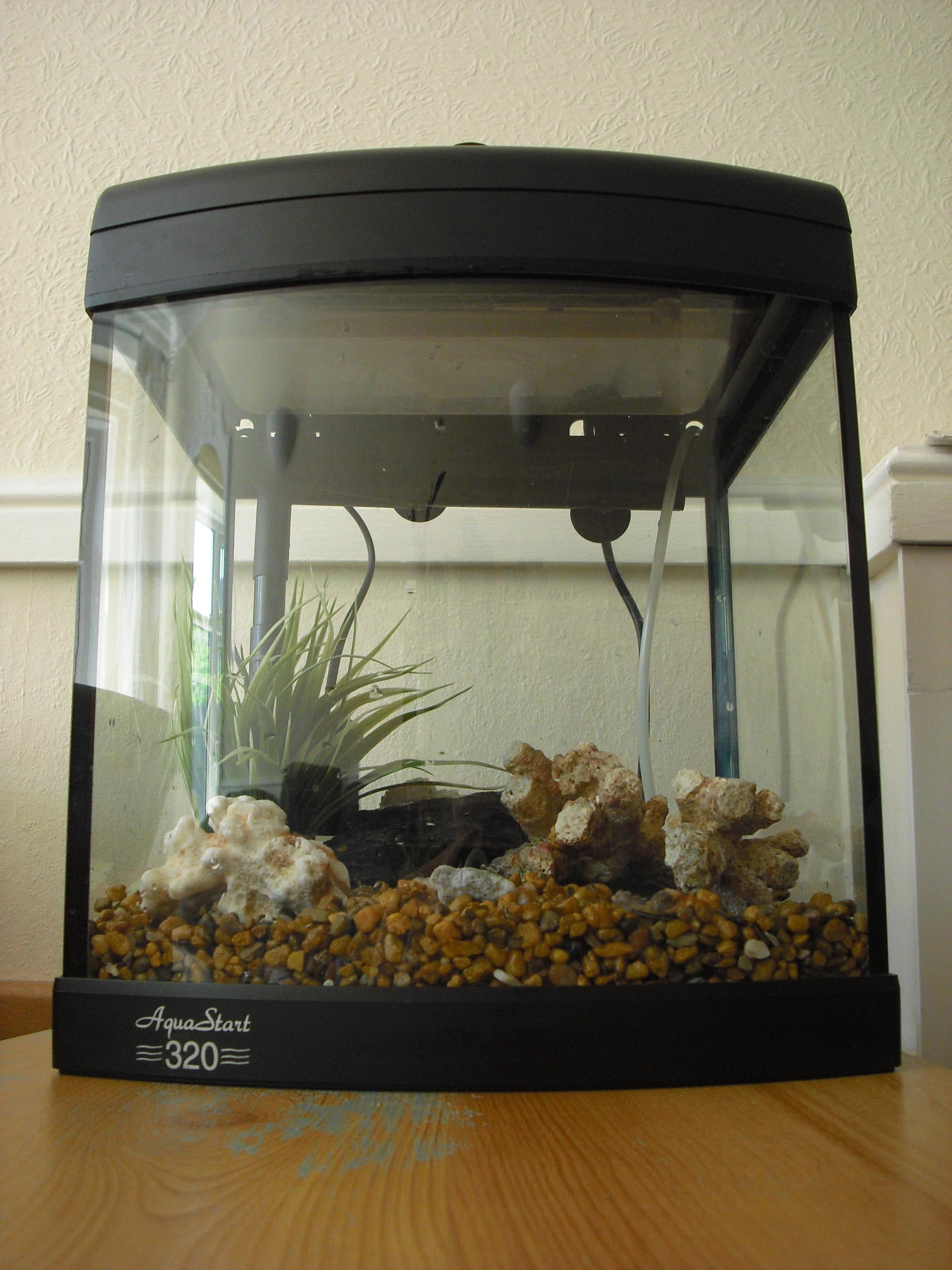 ve started the setup for my tank as it needs to have matured for 2 ...
